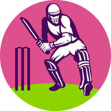 Cricket sports batsman wicket Royalty Free Stock Photography