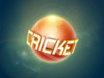 Cricket sports concept with ball and 3D text. Shiny ball with map and 3D text Cricket on stars light background Vector Illustration