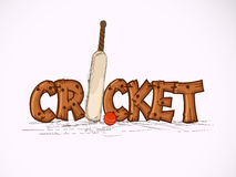 Cricket sports concept with bat and ball. Stylish wooden text Cricket with bat and red ball on pink background Stock Photo