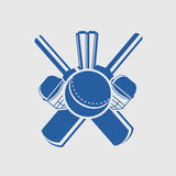 Cricket sports concept with match kit. Royalty Free Stock Images