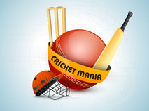 Cricket sports concept with match kit. Stock Photos