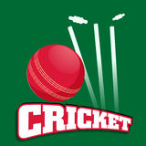 Cricket sports concept with red ball. Stock Photo