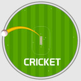 Cricket sports concept with sixer shot. Royalty Free Stock Photography