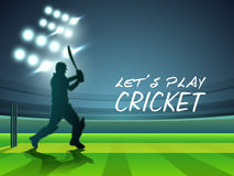 Free Cricket Sports Concept With Batsman. Stock Photo - 48486040
