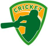 Cricket sports player batsman Royalty Free Stock Photo