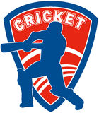 Cricket sports player batsman Royalty Free Stock Photography