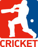 Cricket sports player batsman Stock Photo