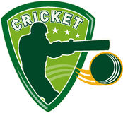 Cricket sports player batsman Royalty Free Stock Photos