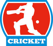 Cricket sports player batsman Stock Photos