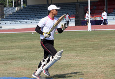 Cricket Stock Photography
