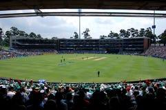 cricket stadionwanderers Arkivfoto