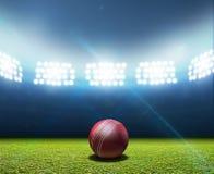 Free Cricket Stadium And Ball Stock Photos - 49740413