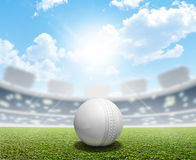 Cricket Stadium And Ball Stock Photography