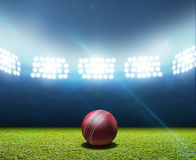 Cricket Stadium And Ball Stock Photos