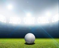 Cricket Stadium And Ball Stock Photography