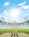 Cricket Stadium And Wickets Royalty Free Stock Photos