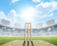 Cricket Stadium And Wickets Royalty Free Stock Image