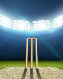Cricket Stadium And Wickets Royalty Free Stock Photo