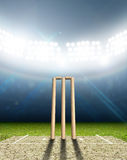 Cricket Stadium And Wickets Stock Images