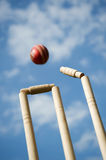 Cricket Stumps Stock Photos