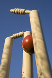 Cricket stumps. The new ball strikes - bails fly as batsman is clean bowled Royalty Free Stock Photo