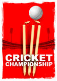 Cricket stumps and bails hit by a ball Royalty Free Stock Images