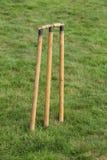 Cricket Stumps. Stock Photo