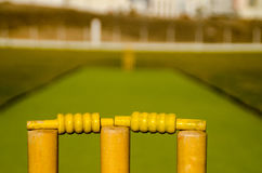 Cricket Stumps. Close-up of a cricket stumps in the cricket ground Stock Images