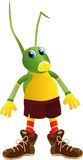 Cricket a toy Royalty Free Stock Photo