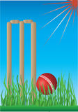Cricket  wicket and ball Royalty Free Stock Photos
