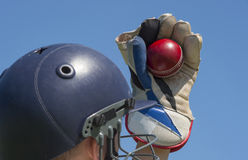 Cricket wicket keeper. With the ball royalty free stock photo