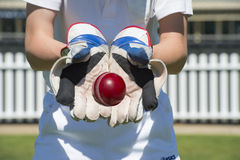 Cricket wicket keeper. Catches the ball stock photos