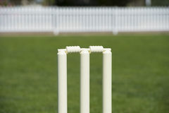 Cricket wicket. With stumps on field Stock Photos