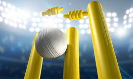 Cricket Wickets And Ball In A Stadium Stock Photos