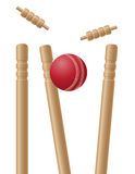 Cricket wickets and ball vector illustration Royalty Free Stock Images