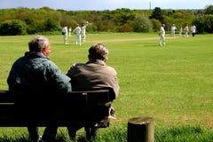 cricket widzów zapałczana wioski Fotografia Royalty Free