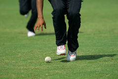 A cricketer picking up a ball. A cricketer ready to pick up a ball stock photos