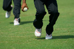 A cricketer picking up a ball. A cricketer ready to pick up a ball royalty free stock photo