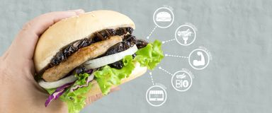 Crickets insect for eating as food items made of cooked insect in burger and vegetable on woman`s hand with media icons nutrition royalty free stock image