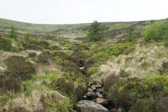 Criffel-Hügelweg Stockfotos