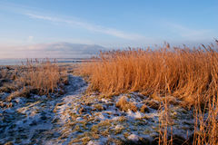 Criffel Hilll от Gencaple, Дамфрис, Шотландии Стоковое фото RF