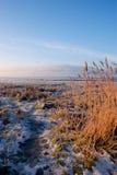 Criffel Hilll da Gencaple, Dumfries, Scozia Fotografie Stock Libere da Diritti