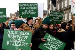 CRIMATE zmiany protesta wiec W KOPENHAGA DANI fotografia royalty free