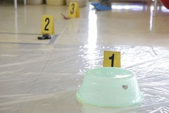 Crime scene demo. Classroom demonstration of crime scene forensics Royalty Free Stock Photo