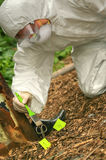 Crime scene outdoor. Criminologist investigates a crime scene outdoor Stock Photography