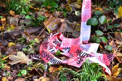 Crime scene, police striped tape wrapped around trees in forest Stock Photos