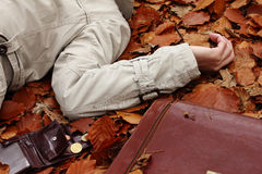 Crime in the woods. A body, an open wallet and a briefcase on autumn leaves in a forest stock images