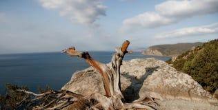 Crimea_1 Fotografering för Bildbyråer