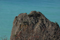Crimea.Cape Fiolent Royalty Free Stock Photography