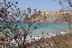 Crimea.Cape Fiolent Stock Images